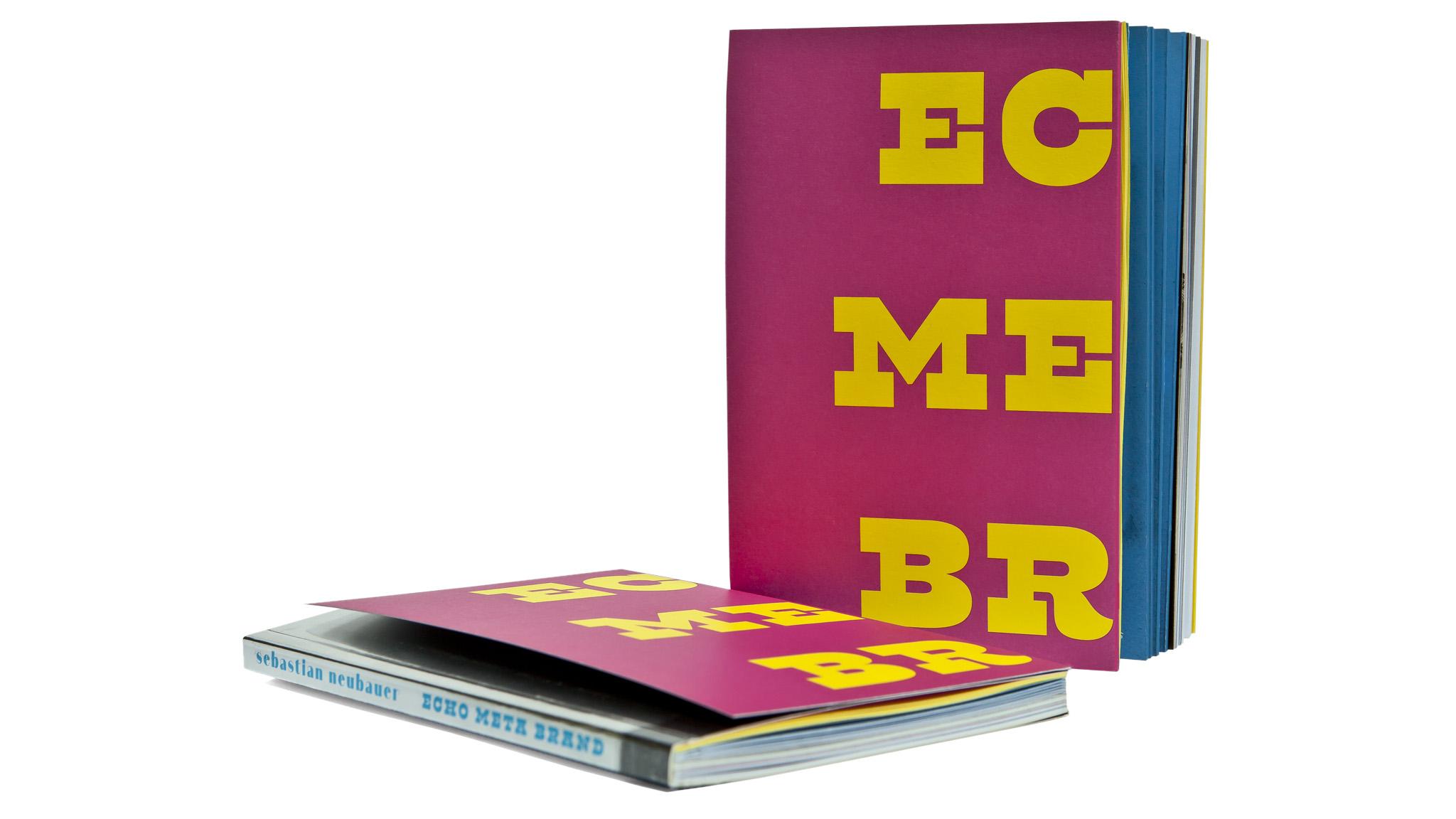 _ECHO META BRAND 2